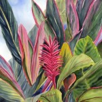 Pink Ginger, watercolor by Jenny Floravita
