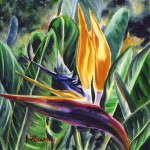 Tropical Bird of Paradise Flower by Jenny Floravita