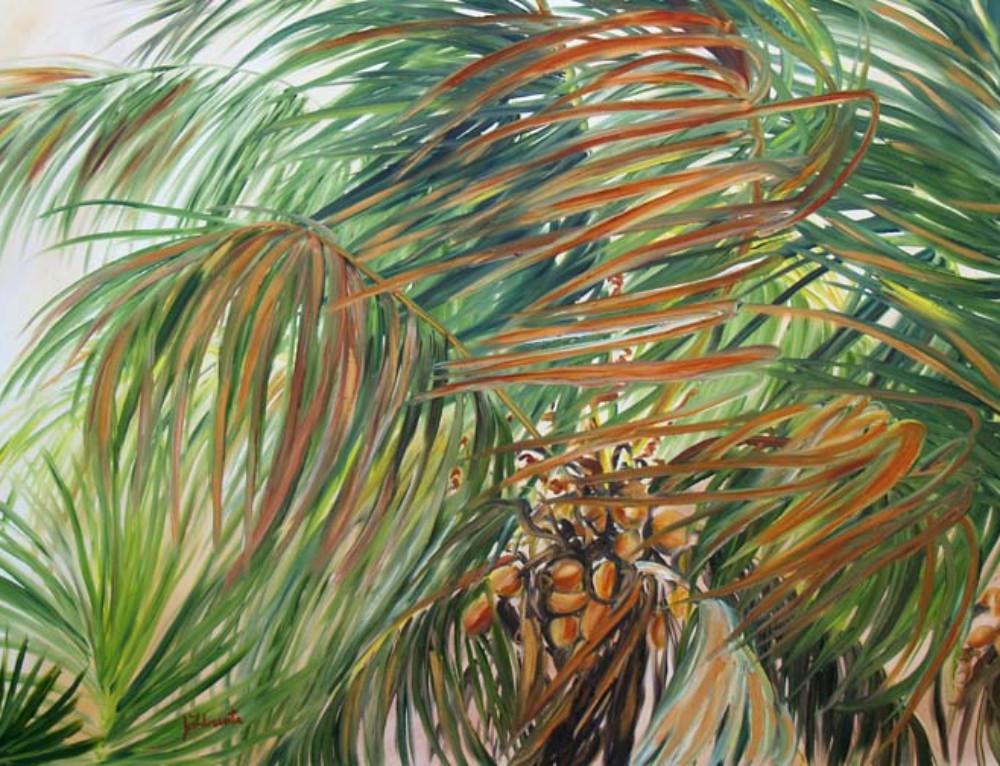 Soft Coco Palm Evening Breeze