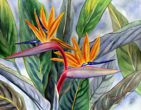 Duet Bird Of Paradise Tropical Flower Painting