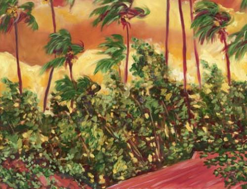 Waimea Hawaiian Island Sun