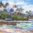 Kauai Coconut Coast